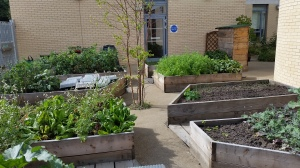 The project ties together several strands of our work promoting both healthy eating and networking locally. Much of the produce is grown locally, including in the centres garden, and the kitchen is staffed by community members from various local projects.